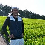 佐京裕一郎(茶農家)の年齢経歴出身は?wiki風プロフィール!