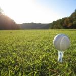 ユンチェヨン(ゴルフ)の画像!経歴プロフィール!カップやスイングも!