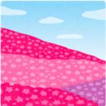 秩父羊山公園の芝桜2017年の見頃はいつ?開花状況や最適アクセス!