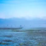 潮干狩り千葉県特集!おすすめスポットや潮見表!無料や穴場もあり!